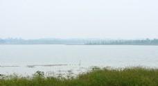鄱阳湖湖心岛实拍视频