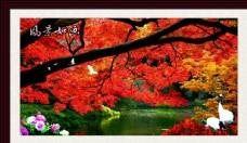 风景如画   枫叶如画图片