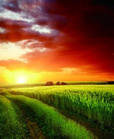 草原夕阳图片
