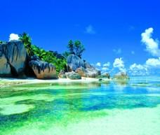浅海礁石珊瑚浅滩绿色海藻图片