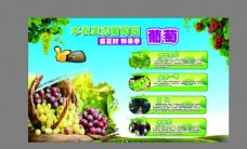 葡萄产地直销海报图片