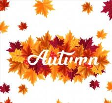 秋季树叶艺术字图片