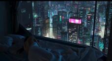 城市唯美夜景电脑壁纸桌面背图片