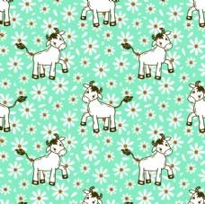小牛花图片