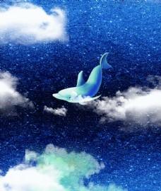 海豚彩绘图片