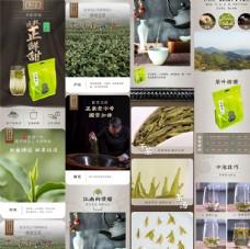 绿茶早香茶详情页图片