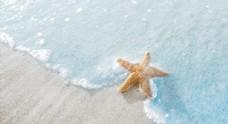 浅蓝沙滩治愈海星图片