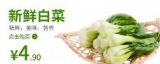 白菜食品海报蔬菜蔬菜海报图片