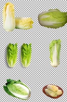 绿色的白菜图片