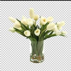 桌花摆件透明底花艺绿植图片