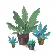 盆栽植物元素图片