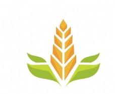 小麦手叶子矢量创意图案图片