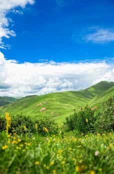 蓝天白云草地背景海报素材图片