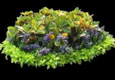 花壇PSD分層素材圖片