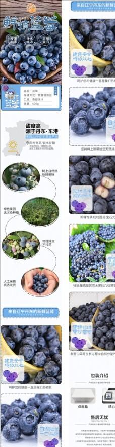 蓝莓水果蔬菜电商淘宝详情页图片