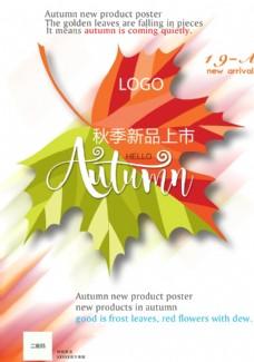 秋季新品上市圖片