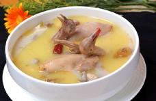 鮮湯清燉乳鴿圖片