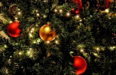 圣诞树装饰场景图片