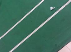 羽毛球场图片