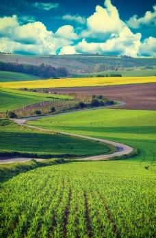 农田风景图片