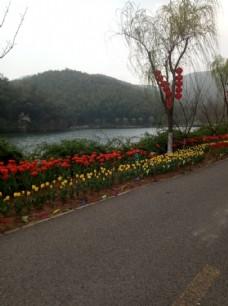 宜兴园林图片