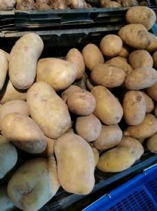 马铃薯图片