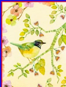 手绘植物鸟类图片