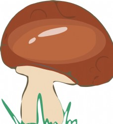 可爱的小蘑菇插画图片