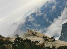 华山风景照图片