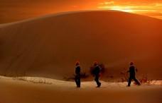 大漠落日伴我归图片