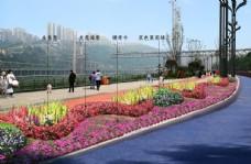 城市鲜花节点道路绿化盆栽图片