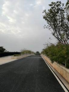 景区内有鲜花的桥上公路图片