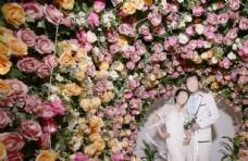 花卉鲜花粉色花花植物图片