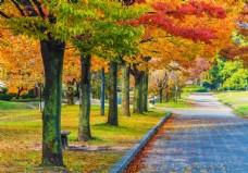 秋日园林风景图片