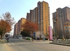 城市高楼图片