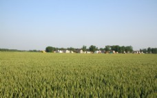 美丽家乡图片