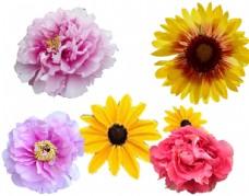 花纹花素材PSD分层图片