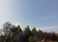 公园素材蓝天白云图片