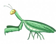 卡通手绘螳螂图片