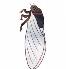 卡通夏日知了蝉手绘插画图片