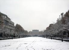 清华雪景图片