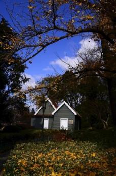 秋天的院子图片