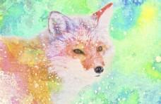 水彩狐狸图片
