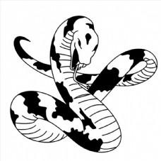 花蛇图案图片