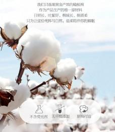 棉花设计图图片