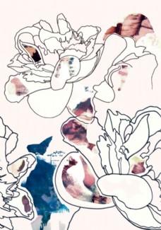 插画玫瑰图片