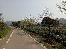 自行车公园图片