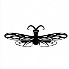 苍蝇素材图片