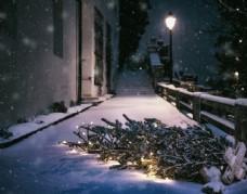圣诞节树冬天图片
