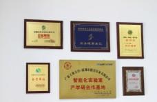 培训机构荣誉墙图片
